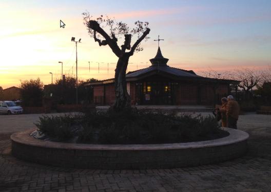 Prima fontana abbandonata, oggi aiuola con ulivo centenario