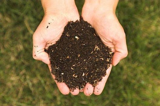 """Il """"compost"""" che sarà prodotto dalla compostiera"""