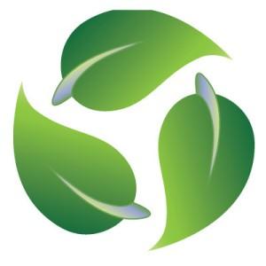 Un partenariato a salvaguardia dell'ambiente