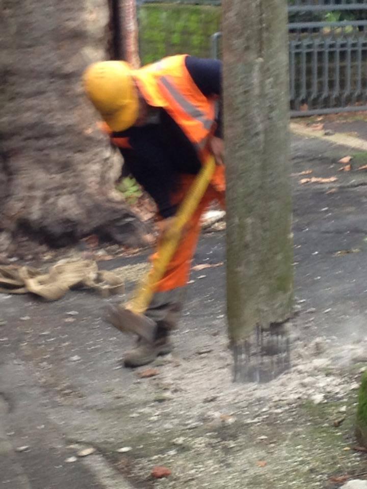 Bonifica dei pali in cemento armato dal lungo lago
